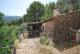 SO1301 - Bonito y soleado olivar en Sóller, con vistas despejadas al valle y al mar