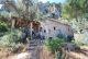 SO1937 - Olivar con dos porches en las montañas de Sóller