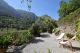 DE2104 - Encatandor piso en planta baja con jardín y fantásticas vistas en el centro de Deià