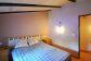 Olivar con caseta de dos dormitorios en las montañas de Sóller