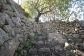 Olivar con casita en es Marroig, Fornalutx